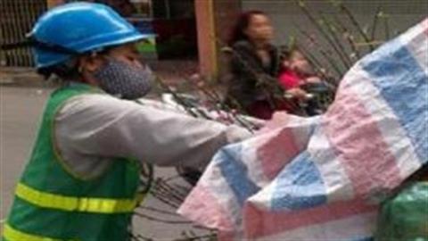 Bánh chưng vứt sọt rác, người Việt tranh ăn tiệc buffet