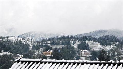 Lý giải hiện tượng tuyết lại phủ trắng xóa ở Sa Pa