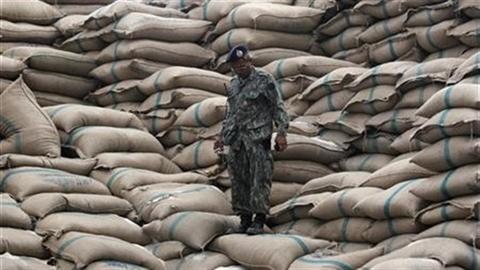 Xuất khẩu gạo Việt Nam nhận tin không vui