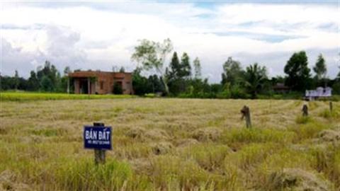 Nông dân bỏ ruộng sẽ lên bàn nghị sự Quốc hội?