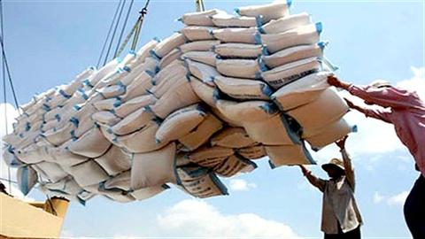 Trúng thầu bán gạo giá thấp, nông dân thiếu trước hụt sau...