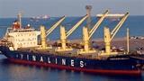 TGĐ Vinalines: Khối nợ rất lớn, bán tàu cắt lỗ nhanh!