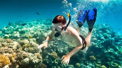 Du khách bị 'cấm' lặn biển ở Côn Đảo