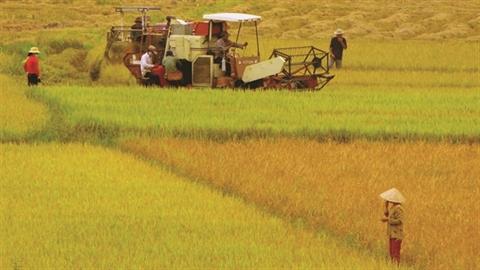 VietinBank với sự nghiệp phát triển nông nghiệp nông thôn