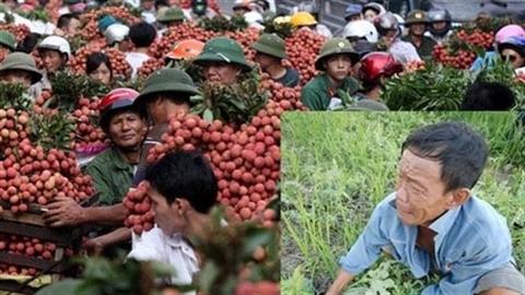 Phụ thuộc Trung Quốc: Việt Nam rơi vào điều tối kỵ