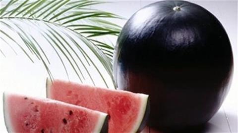 Những loại trái cây đáng giá cả gia tài
