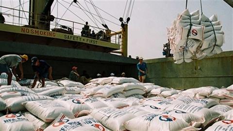 TQ cấm, Mỹ dọa kiện:Gạo Việt ngấm đòn mua rẻ, bán rẻ