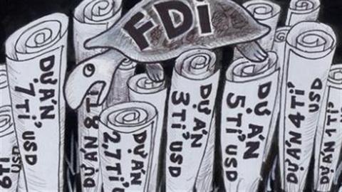 Biệt đãi FDI: Việt Nam kém Thái Lan vì thiếu...