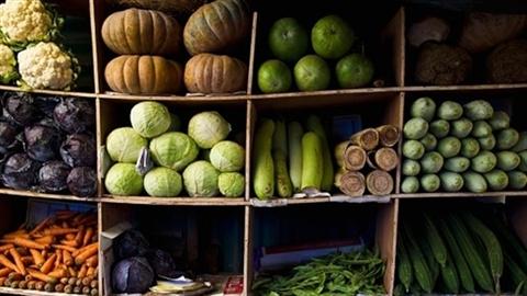 500 triệu đô nhập hạt giống: Dại gì mua hàng Việt Nam!?