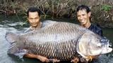 Săn loài cá 'khôn ba năm, dại một giờ'