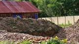 Hiệu trưởng đào sân trường tìm vàng bị chuyển đến vùng sâu