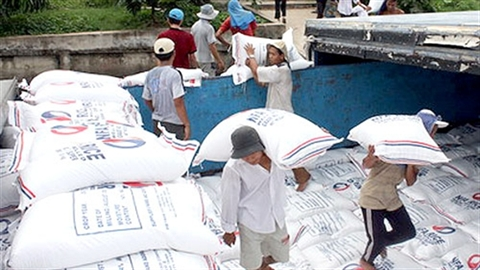 Thành tích xuất gạo sang Philippines: Mặn chát nước mắt nông dân!