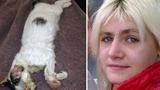 Bị phạt tù vì nướng mèo trong lò vi sóng