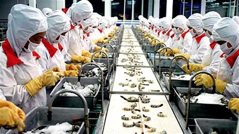 Thủy sản Việt sang Nga, vướng rào chắn kỹ thuật trá hình?