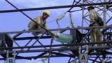 Đường dây 500kV Bắc-Nam mạch 1 lại gặp sự cố