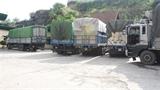 CSGT dẫn xe quá tải:Hành động