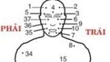 Lý giải vị trí 37 nốt ruồi trên cơ thể con người