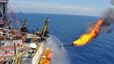 Việt-Mỹ hợp tác khai thác mỏ khí 8.000 tỷ m3