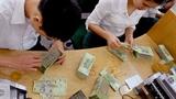 TPHCM: Công khai danh sách doanh nghiệp nợ thuế khủng