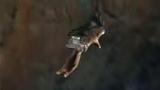 Xem đại bàng săn sơn dương trên vách núi cao