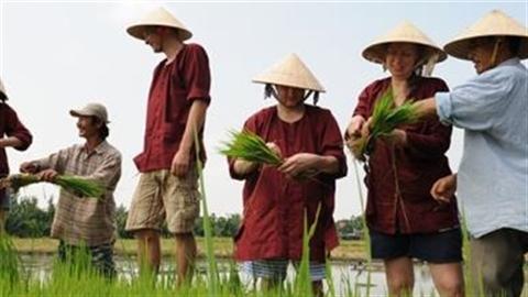 Xuất khẩu chuyên gia: Việt Nam thừa chuyên gia, thiếu chất xám!