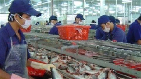 Cá tra, ba sa Việt Nam tiếp tục bị Mỹ áp thuế