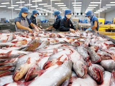 Cá tra, basa Việt Nam bị áp thuế chống bán phá giá tại Mỹ thêm 5 năm