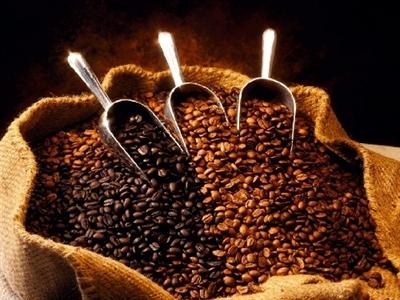 Giá cà phê Tây Nguyên quay đầu giảm xuống 40,5-41,3 triệu đồng/tấn