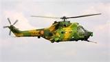 Trực thăng Romania rơi, 8 người tử nạn