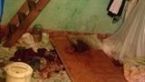 Rúng động chồng cắt cổ vợ ở Hạ Long