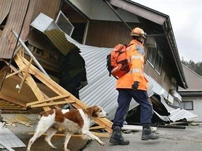 Động đất mạnh liên tiếp ở Trung Quốc, Nhật Bản