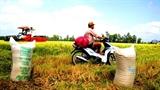 Cổ phần hóa Vinafood 2: Chỉ DNNN Việt Nam mới đặc quyền?