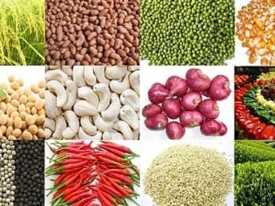 Xuất khẩu nông, lâm, thuỷ sản vượt 28 tỷ USD, tăng 12%