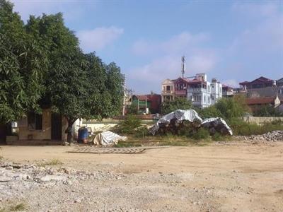 Thực hư việc Dự án Vĩnh Hưng bị tuýt còi