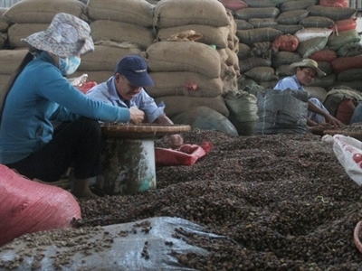 Cạnh tranh giành thị trường cà phê