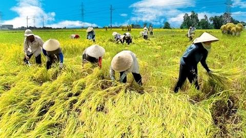 Nông nghiệp canh cánh việc nhập khẩu hết trừ... đất, nông dân