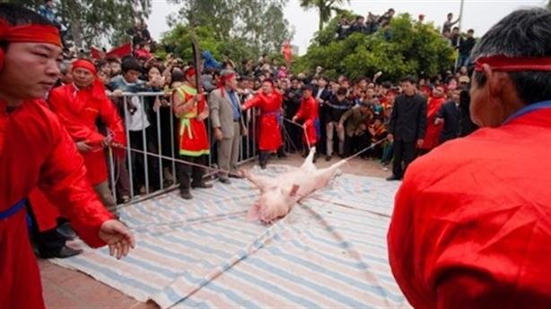 Lễ hội chém lợn: Không thể hủy bỏ