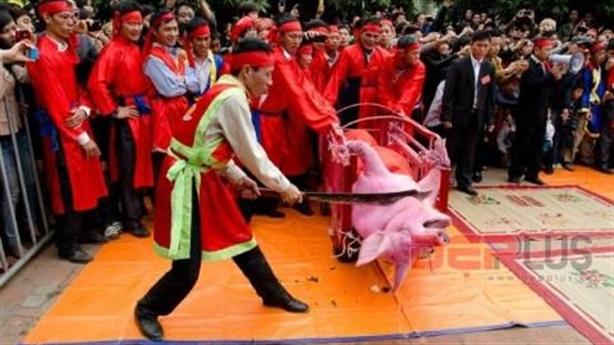 Lễ hội Chém lợn: Tranh luận nóng