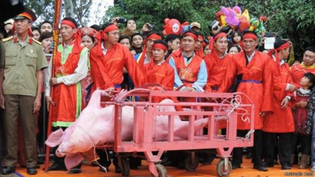 Lễ hội Chém lợn: Chém kín thì không còn ý nghĩa