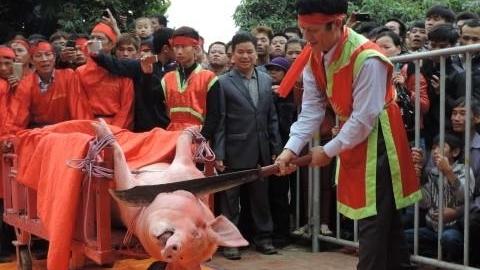 Lễ hội Chém lợn: Bộ Văn hoá nói lời đanh thép