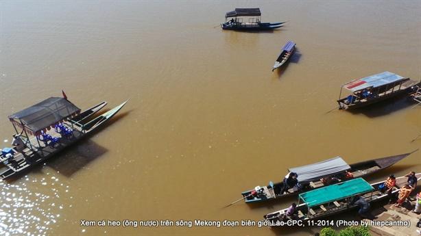 Thủy điện Don Sahong