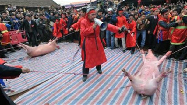 Bộ trưởng Văn hóa lên án đâm trâu, chém lợn