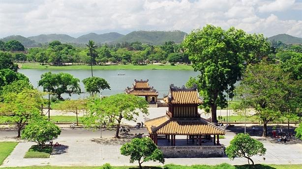 Sau Hà Nội, Huế chuẩn bị dự án chặt 3.800 cây xanh