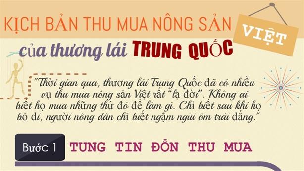 Hành trình thu mua nông sản Việt của thương lái Trung Quốc