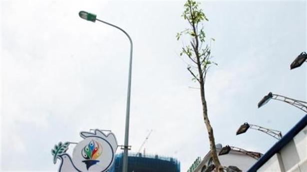 Kết luận thanh tra vụ cây xanh Hà Nội