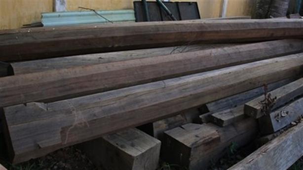 Huyện xin công an tỉnh trả gỗ cho lâm tặc vì...gia cảnh