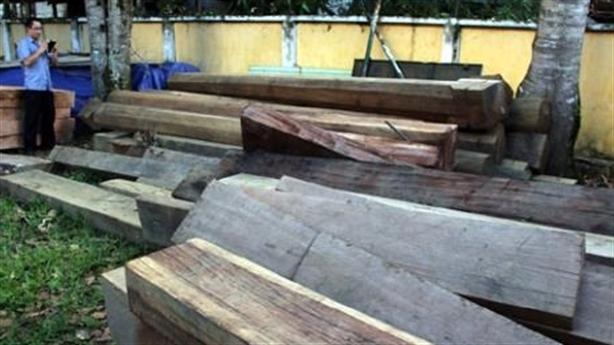 Huyện xin công an trả gỗ cho lâm tặc: Là bình thường