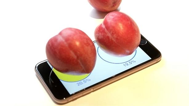 Dùng iphone 6s để cân mận