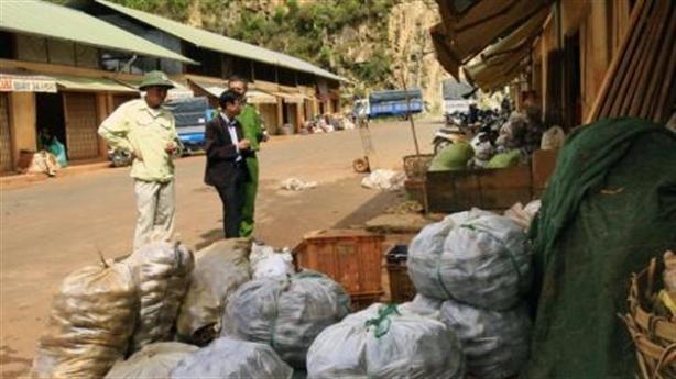 Đà Lạt đóng chốt tại chợ chống khoai tây Trung Quốc