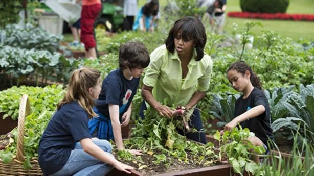 Vườn rau sạch cực đỉnh của nhà Obama trong Nhà Trắng